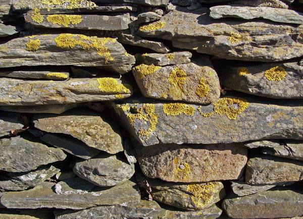 glen farm portsmouth rhode island