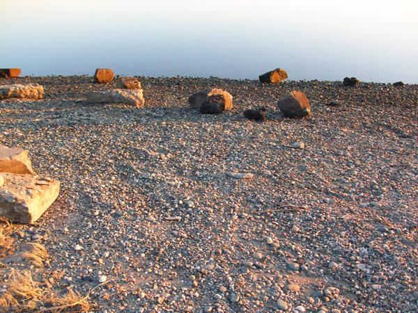 gull cove portsmouth rhode island