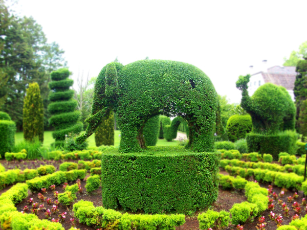 green animals portsmouth ri
