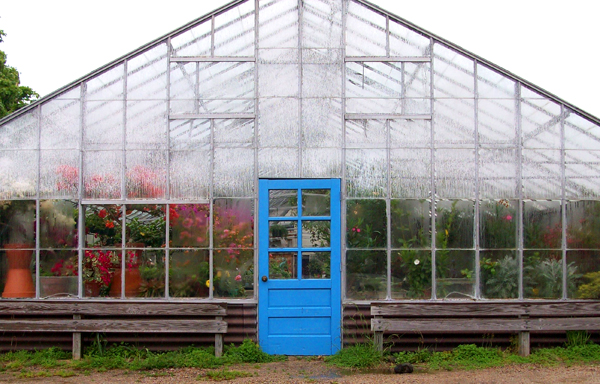 peckhams greenhouse little compton